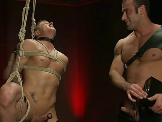 brown haired gay hunk dominates over tied