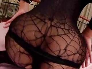 eastern  pantyhose