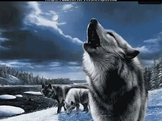 dio-lock up the wolves english euro brit italian