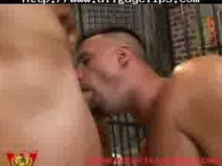 prison wrestling group fuck gay sex gays gay cum